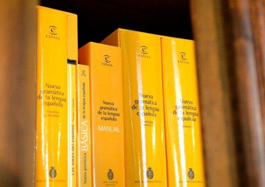 Manual de la Gramática de la Lengua Española